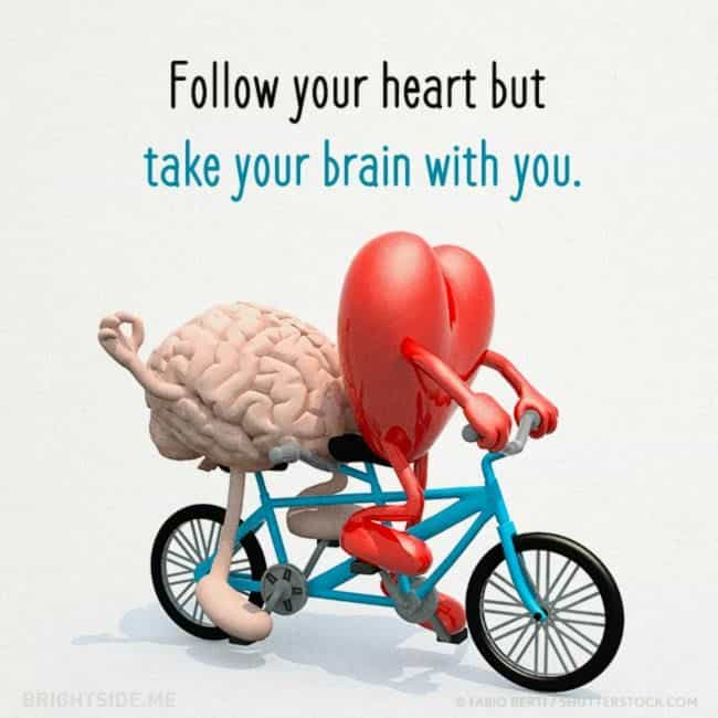 Follow your Heart and Take brain with you | funny Caption